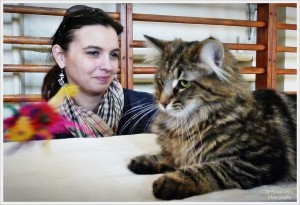Pokaz kotów Włocławek marzec 2012