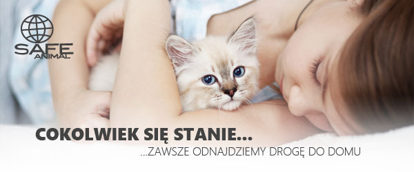 W superbly Mruczalscy*PL | Hodowla Kotów Rasowych MRUCZALSCY*PL GN13